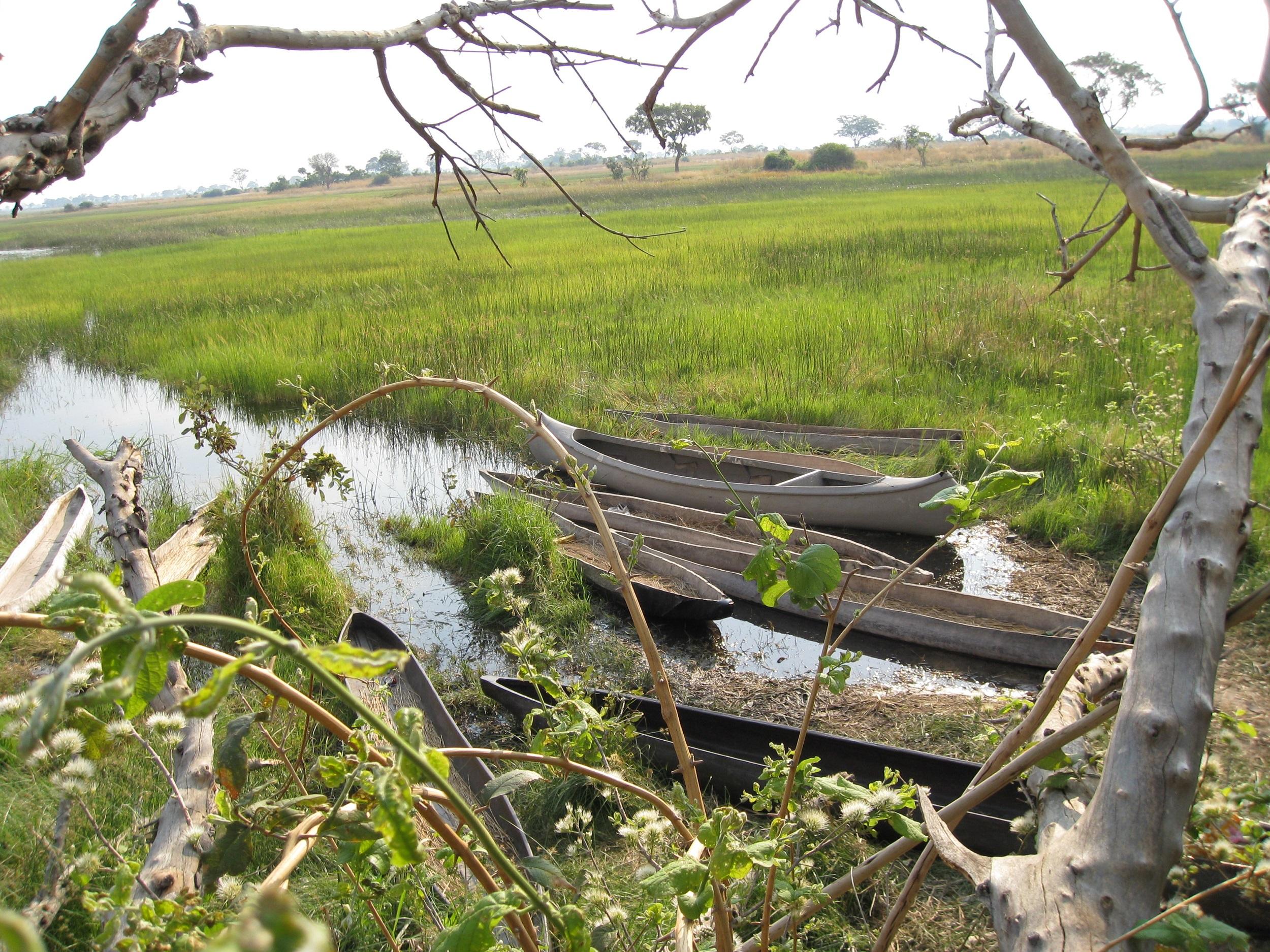 Okavango Delta & Chobe