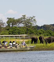 Tourist activities in Chobe National Park