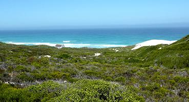 Visit De Hoop Nature Reserve
