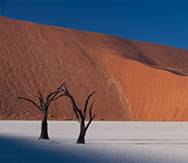 Visit Namib Naukluft National Park